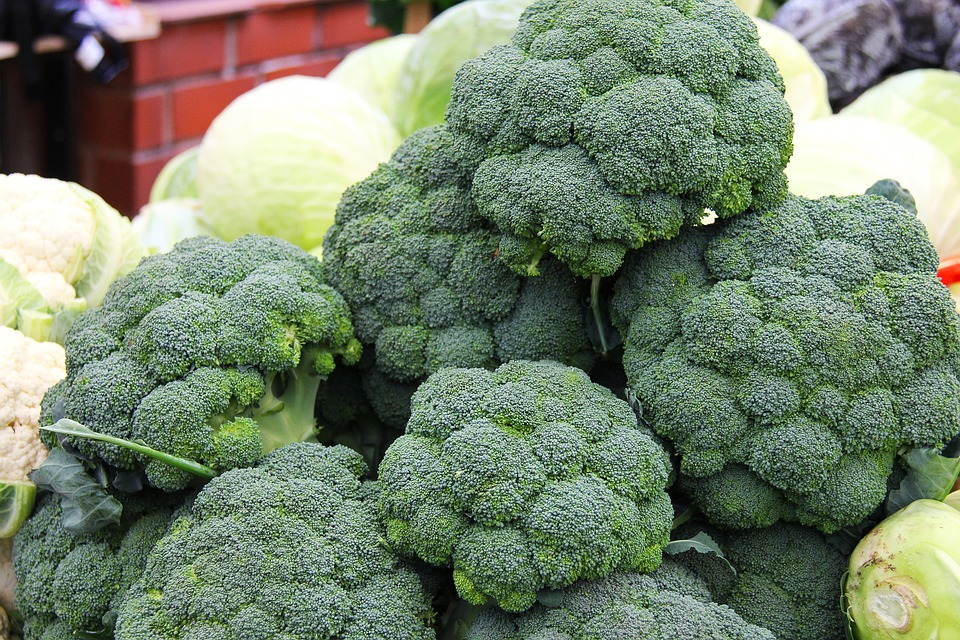 Broccoli Health Benefits: Find out why this vegetable is a MUST HAVE food