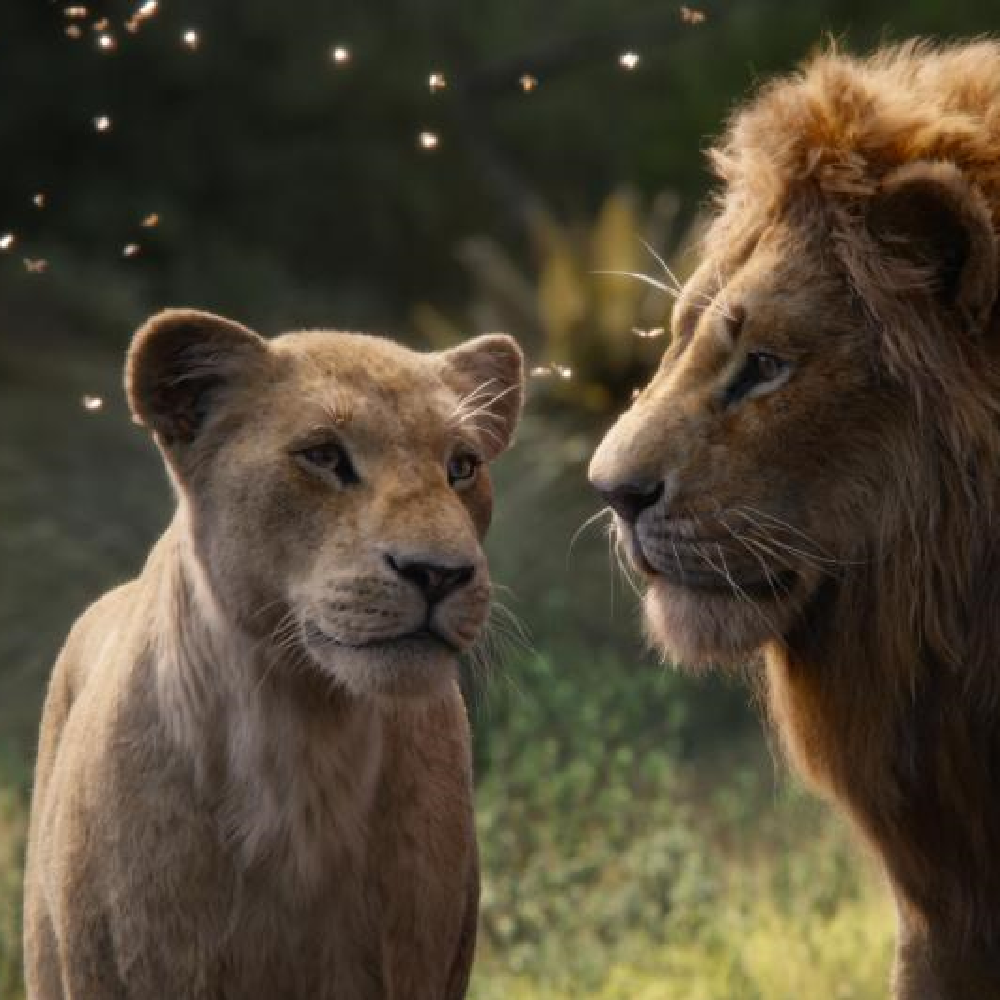The Lion King Box Office Collection India Day 21: Disney's film minted THIS amount in its third week
