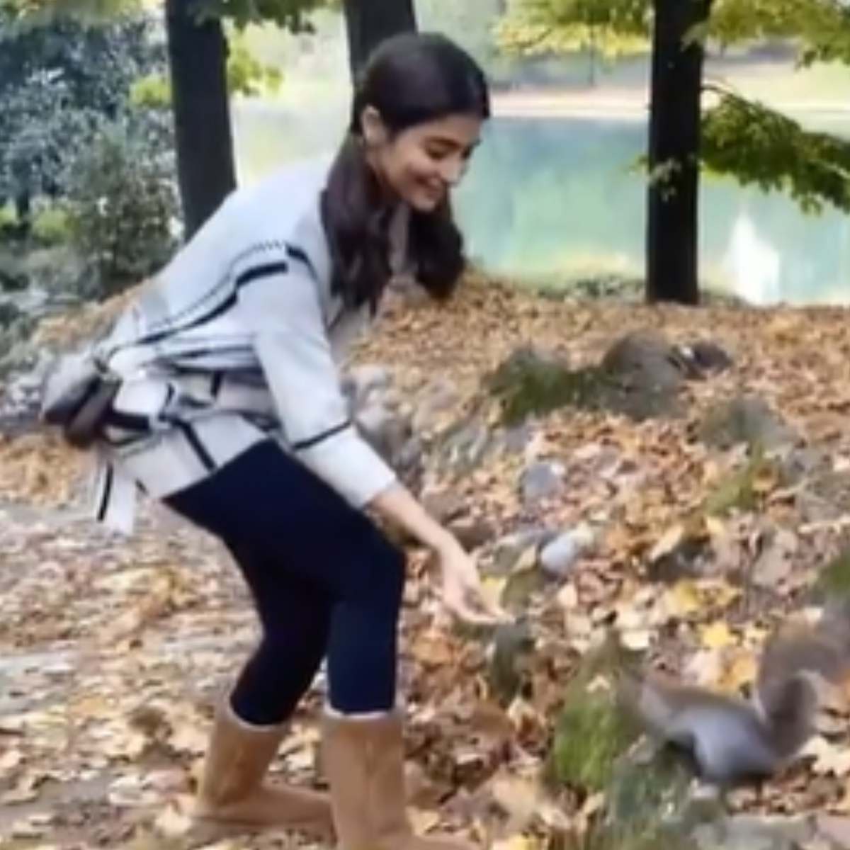 Pooja Hegde's video with squirrel in Italy