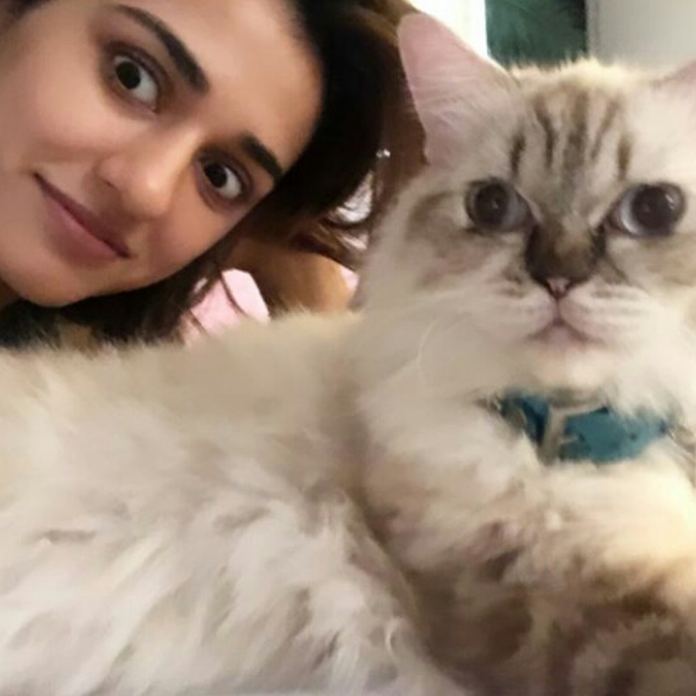 Radhe star Disha Patani trying to get her cat's attention for photos is every pet parent ever; Check it out