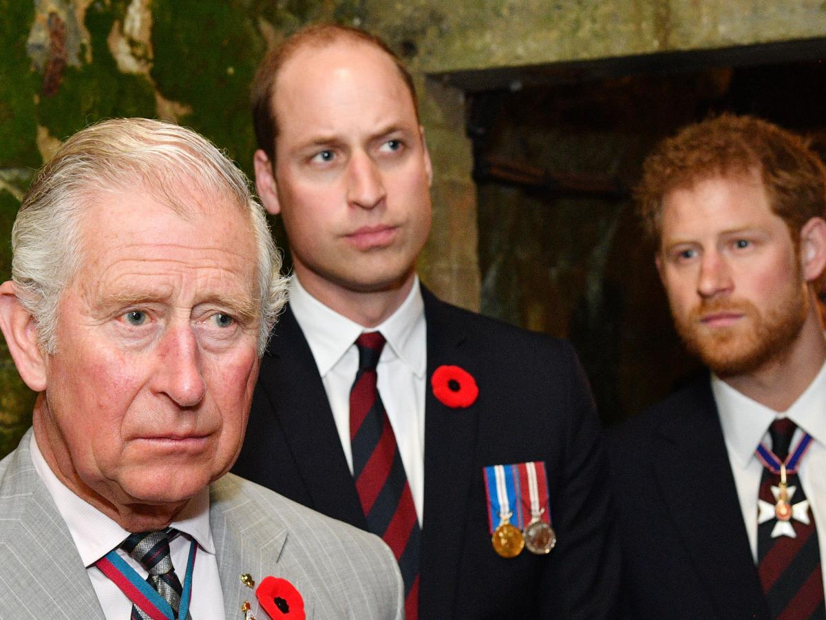 Prince Harry & Prince William not yet buried the hatchet; Prince Charles  'still fuming' over Oprah interview?   PINKVILLA