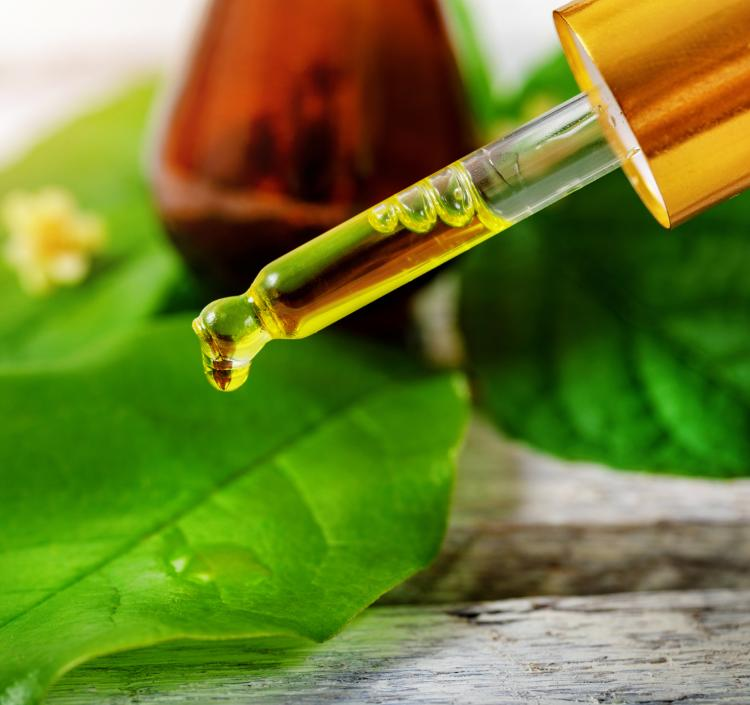 Hair care: 3 Benefits of Tea Tree Oil for the best hair and scalp health