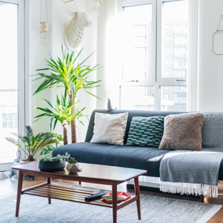 5 Creative coffee table styling tricks that you can try