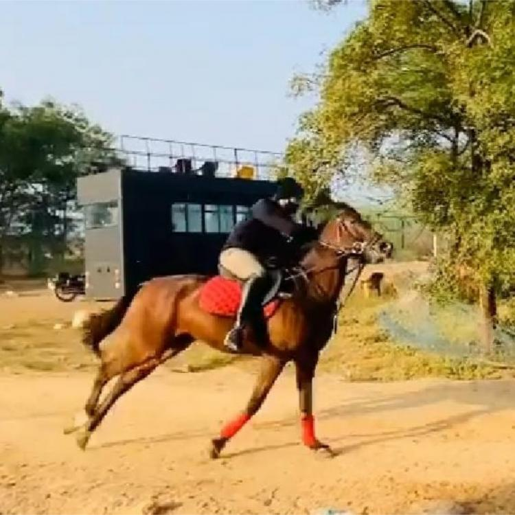 Akhil Akkineni shares his horse riding video; Says it is the best way to start the day