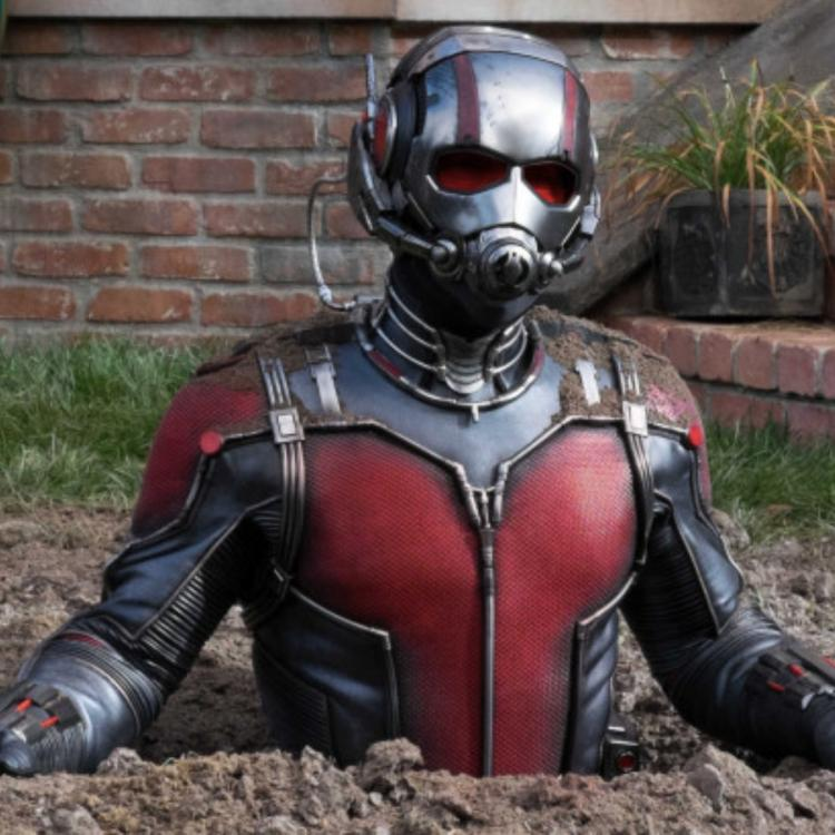 Ant Man 3 CANCELLED & Paul Rudd's MCU superhero to continue his journey on Disney Plus?