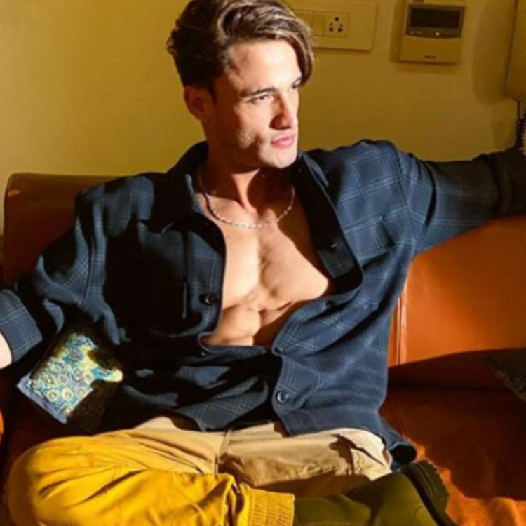 Asim Riaz shows off his abs as he relaxes on a couch and leaves his fans awestruck; See Photos