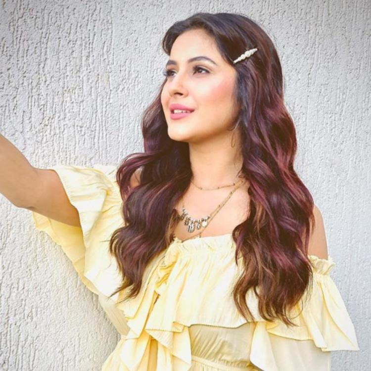 Bigg Boss 13 contestant Shehnaaz Gill gets a tad bit philosophical with a stunning photo in yellow