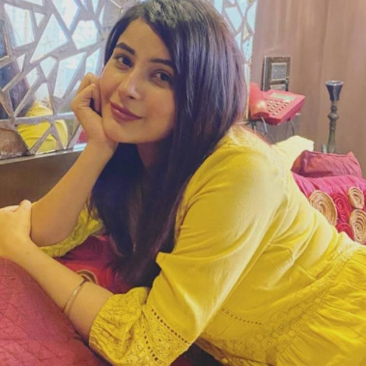 Bigg Boss 13 fame Shehnaaz Gill looks undeniably pretty in a yellow outfit as she poses in her new PHOTO