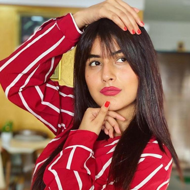 Bigg Boss 13 fame Shehnaaz Gill OPENS UP about her Bollywood plans; Says 'I'm focused on my acting career now'