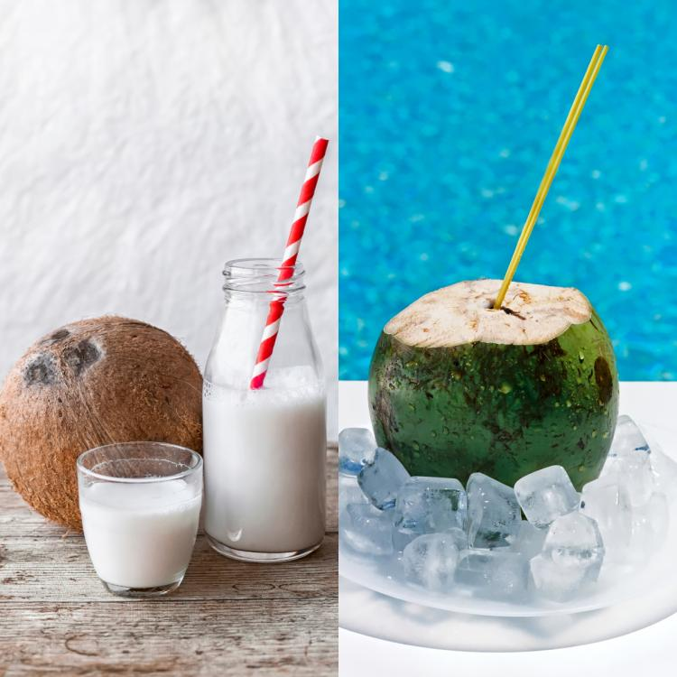 Coconut Water VS Coconut Milk: What's the difference and which is healthier?