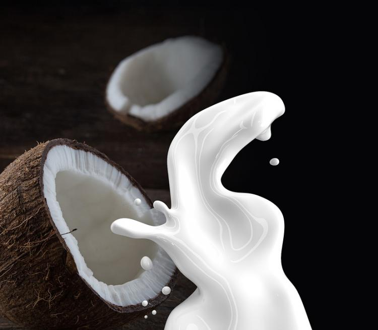 Health Benefits of Coconut Milk: Here's why you need to add this non dairy milk to your diet