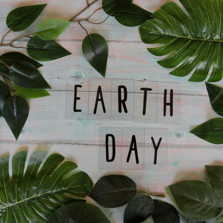 Earth Day 2021: Environmental quotes, wishes and messages to share with your friends and family