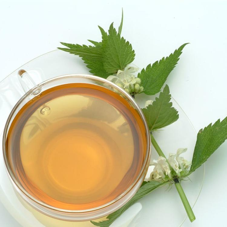 Nettle Tea: Here's why THIS herbal drink is good for your health