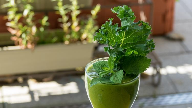 Benefits of Coriander Juice: Here's how you can lose weight by consuming coriander juice