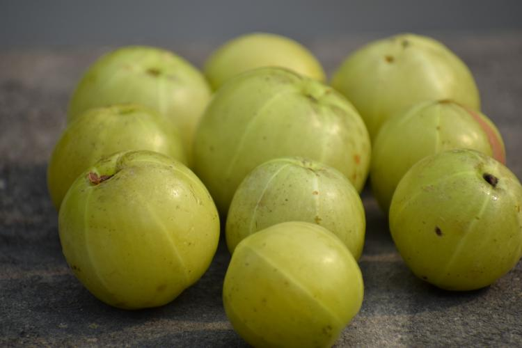 Try THESE easy amla home remedies for healthy hair