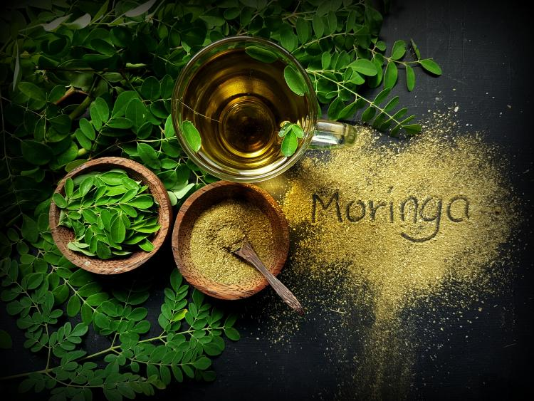 Health Benefits of Moringa Tea: THIS is why you should add it to your diet