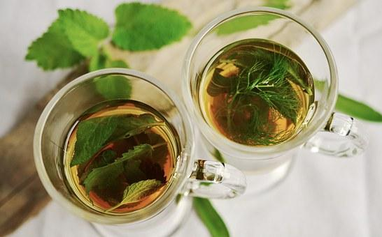 Aiming at shedding a few pounds? Here's how tulsi can help you with weight loss