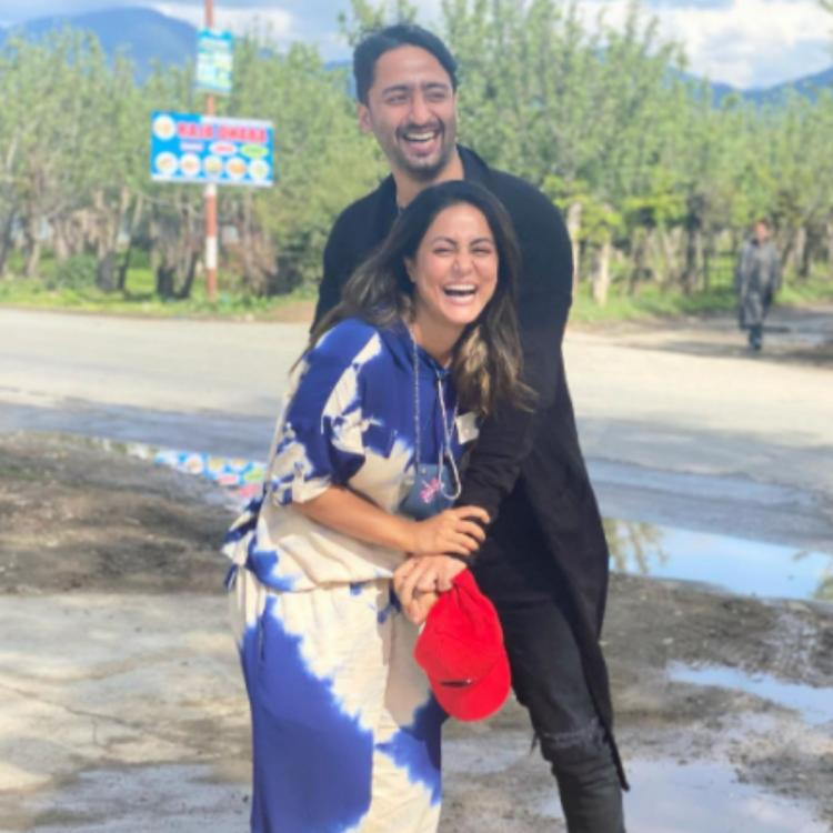 Hina Khan and Shaheer Sheikh beam with joy amid picturesque hills as they hint at a 'surprise'; See PHOTOS