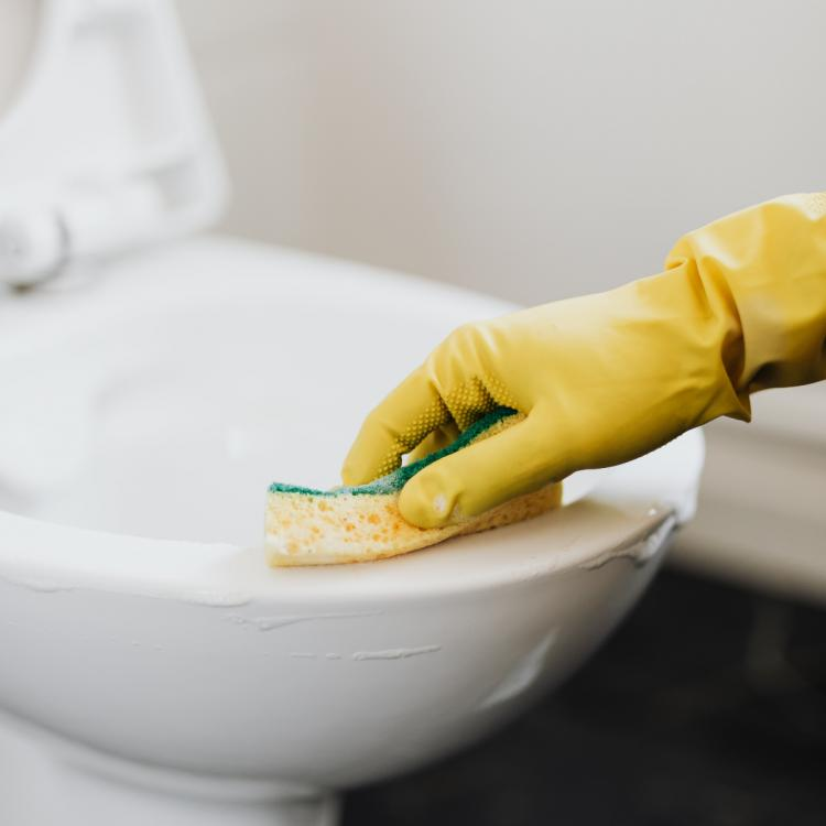 Amazon Deal of the Day: 5 Cleaning and utility products you need for everyday house activities
