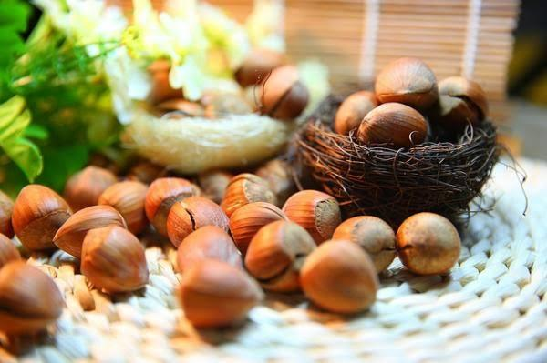 Hazelnuts Health Benefits: THIS is why hazelnuts are good for health and skin