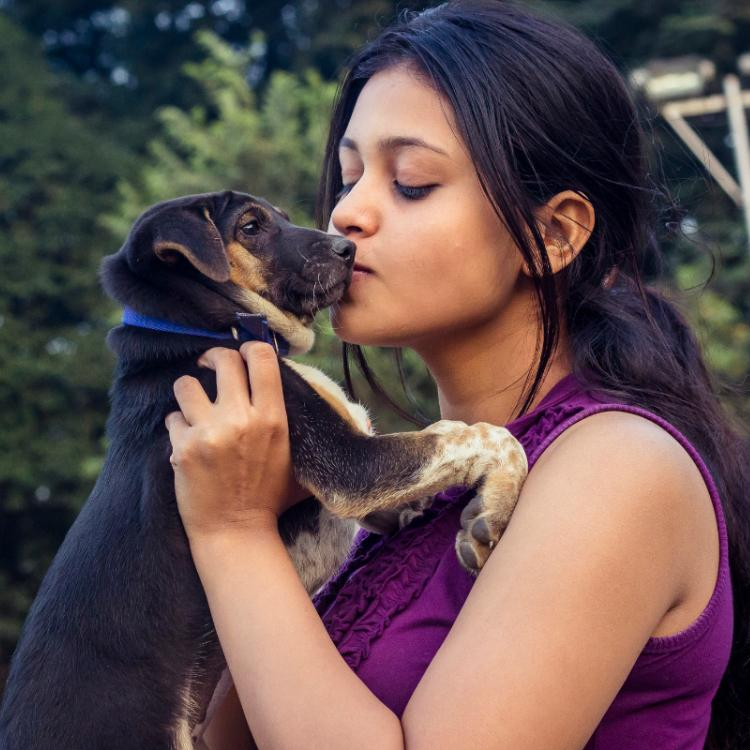 Is your dog not eating properly? Check out THESE causes and appetite solutions for your pet