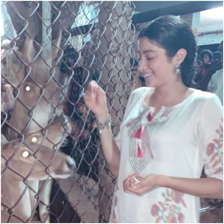 Janhvi Kapoor looks endearing as she feeds her new 'bambiii friends' in her latest photo; Check it out