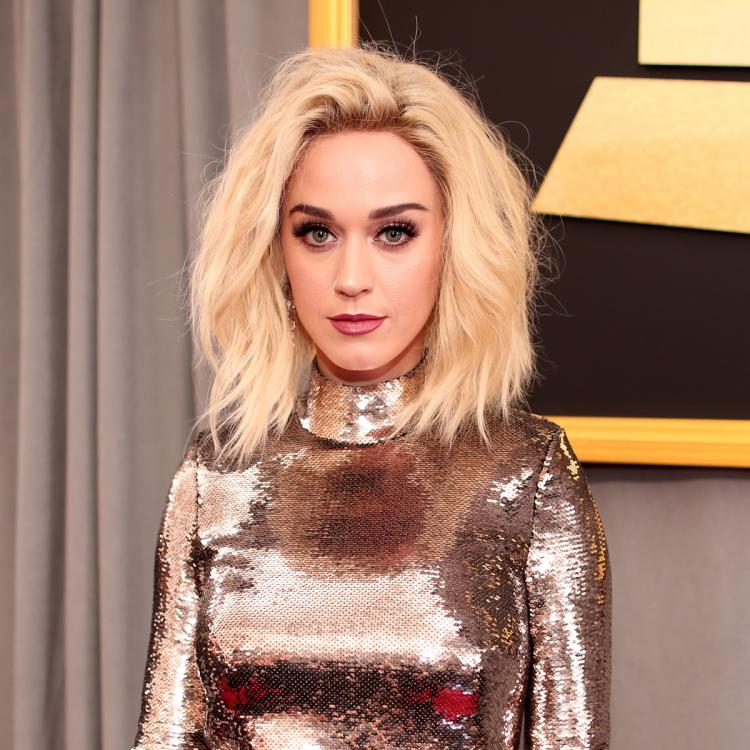 Katy Perry advocates fans on being a working mom