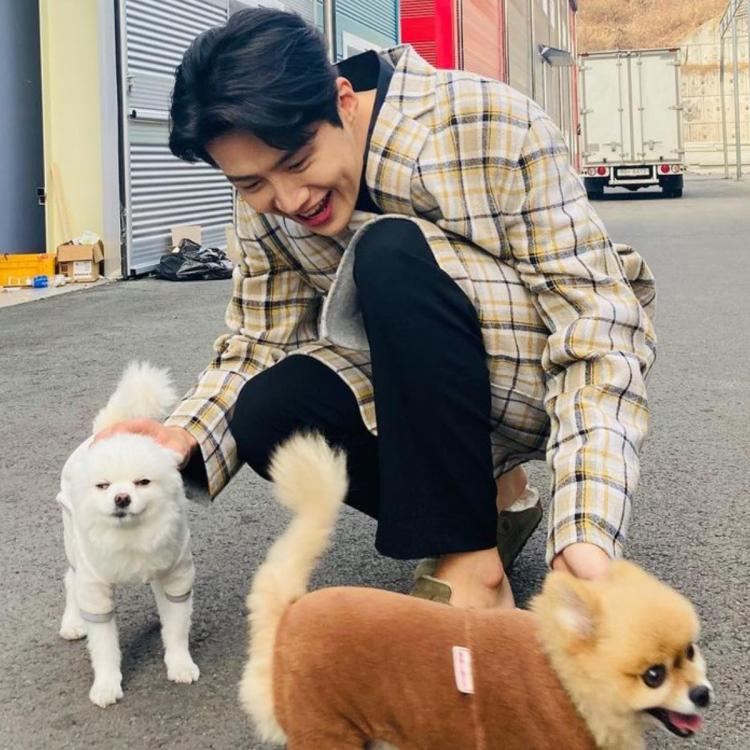 Start-Up's Kim Seon-ho was glowing in his recent Instagram post as he played with cute dogs