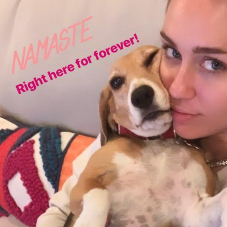 Miley Cyrus wishes Namaste to her fans on Instagram with an adorable photo with her dog; Check it out
