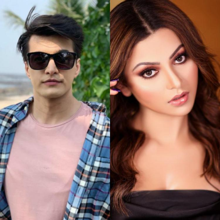 Mohsin Khan and Urvashi Rautela collaborate for a project?