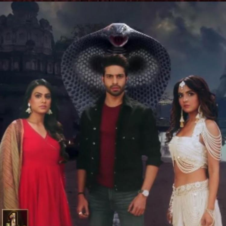 EXCLUSIVE: Naagin 4 to be a fresh story; Nia Sharma and Jasmin Bhasin to NOT play Bella's daughter