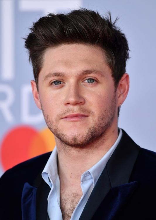 Niall Horan reveals that coming from simple backgrounds helped One Direction in dealing with the pressure.