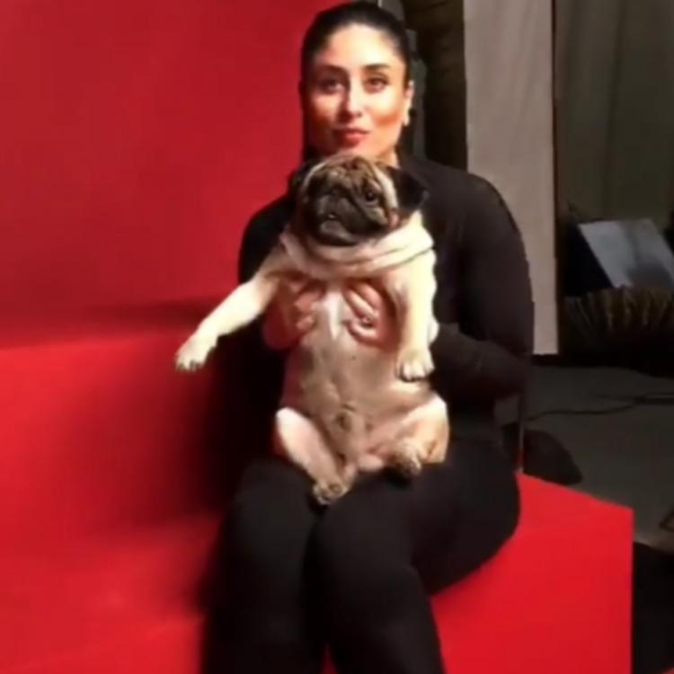 Not Leonardo DiCaprio but Kareena Kapoor Khan films with her other favourite 'Leo'; Watch Video