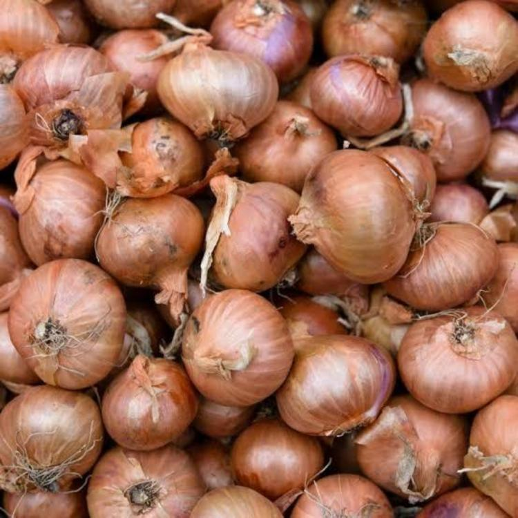 Mumbai man buys onions worth Rs 2.32 lakhs to reach his hometown in Allahabad during the lockdown