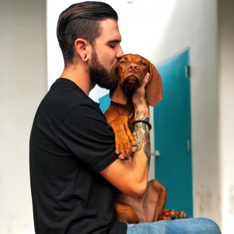 5 Zodiac signs who are animal lovers and who firmly believe in choosing animals over people