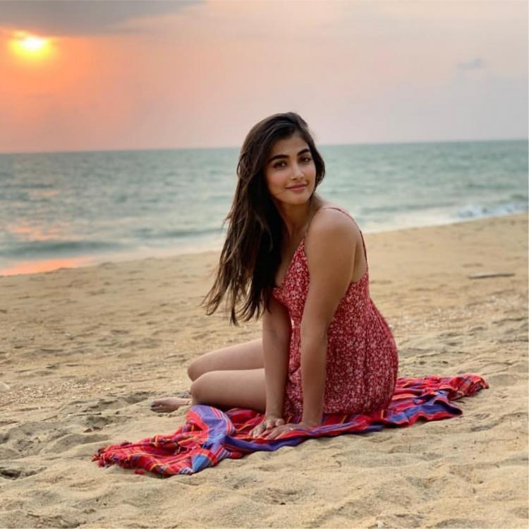 Pooja Hegde to Samantha Akkineni: 7 times when top South actresses turned into water babies