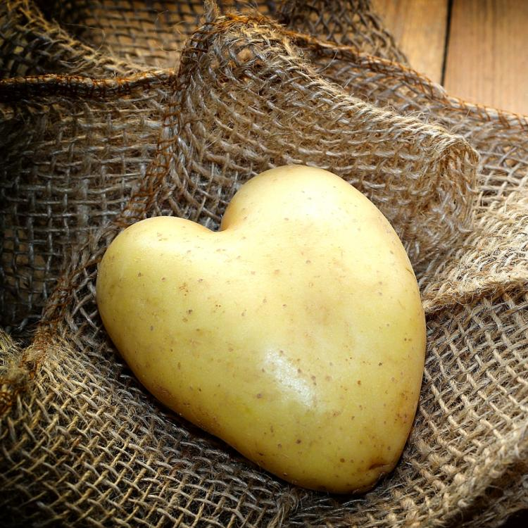 Ingredient spotlight: Potato juice is the magical potion for aging & acne prone skin with benefits