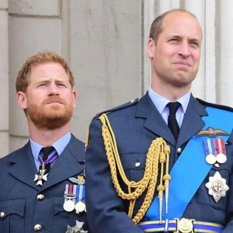 Prince William in disagreement with Prince Harry's comments