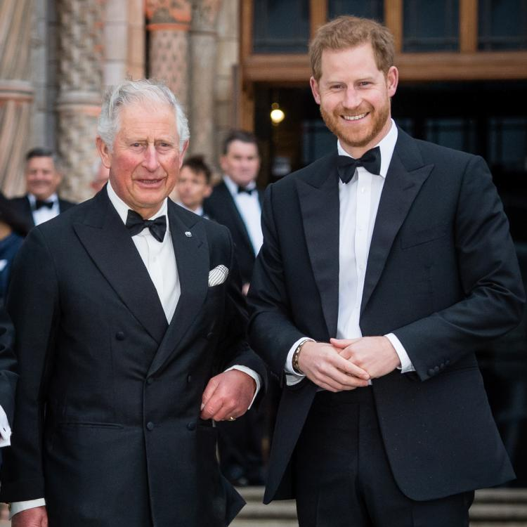 Prince Charles & Harry's relationship 'turned a corner' since Lili's birth