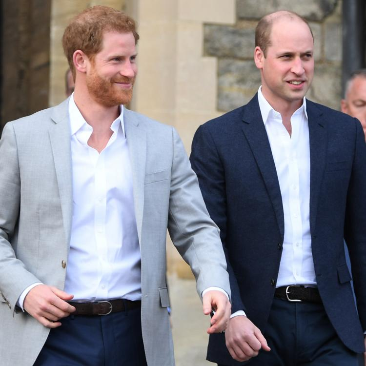 Prince Harry and Prince William will reportedly reunite in July.