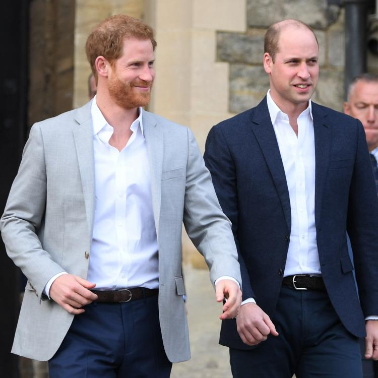 Prince Harry and Prince William's shared grief could bring them together