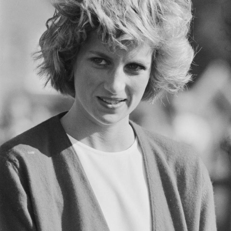 Anonymous group reveals SHOCKING details of Princess Diana's death; adds fuel to conspiracy theories