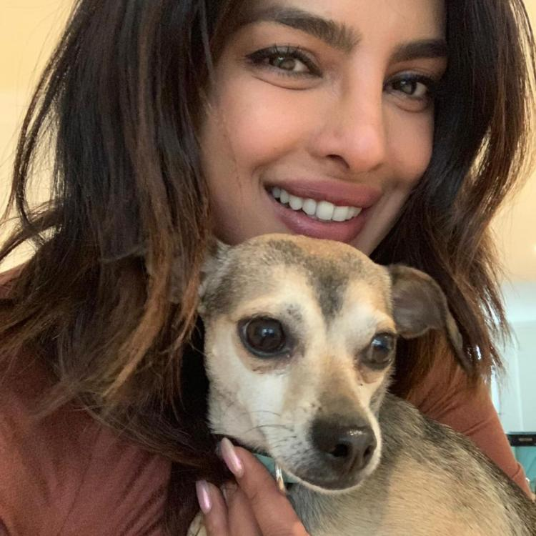 Priyanka Chopra reveals how her pup Diana became her biggest strength during her initial days in New York.
