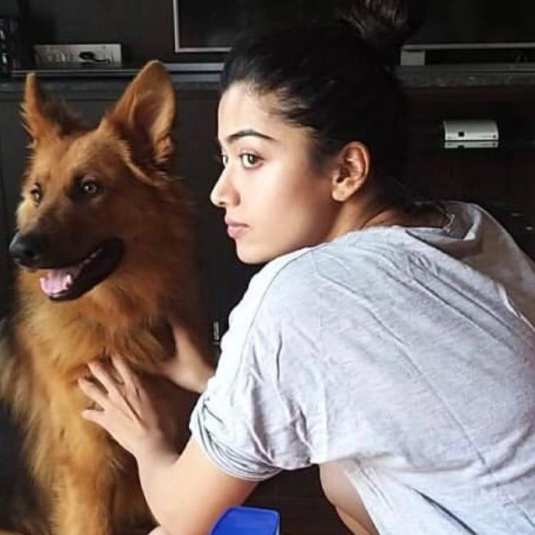 Rashmika Mandanna had a sleepless night; REVEALS what happened at 5:30 AM when she opened the door