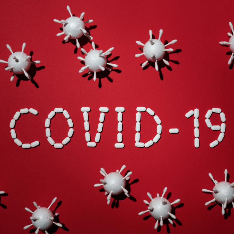 Research indicates lasting immunity after recovering from COVID 19