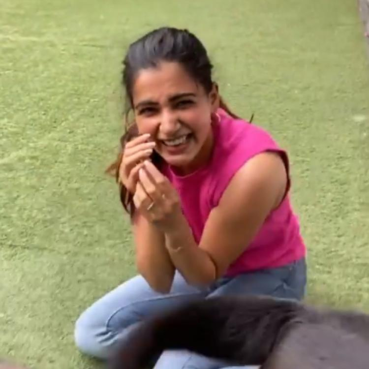 Samantha Akkineni can't stop laughing as she indulges in some fun banter with her furry friends; Watch VIDEO