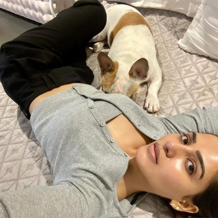 Samantha Akkineni gives us cues to wear leisure wear with THIS latest photo; See post