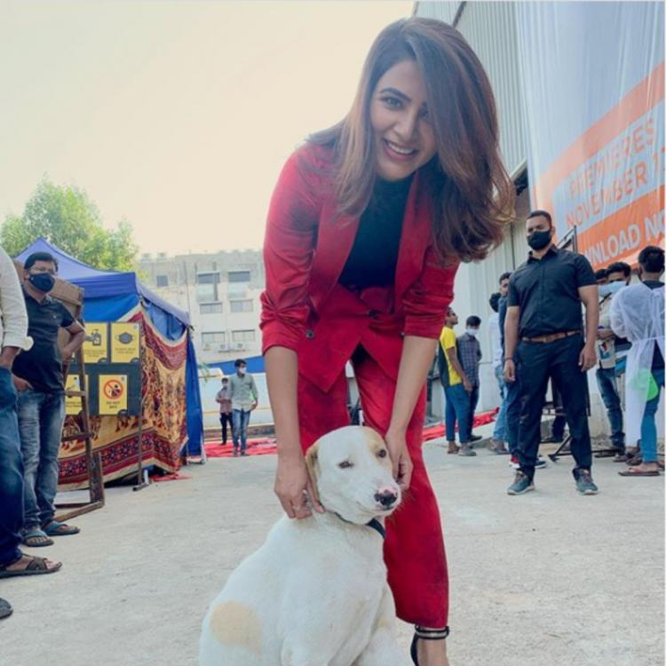 Samantha Akkineni had the best weekend ever and her latest PHOTO with a furry friend is proof