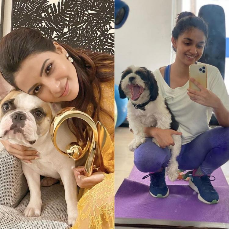 Samantha Akkineni's Hash to Keerthy Suresh's Nyke 10 South celebrities and their pawsome pets