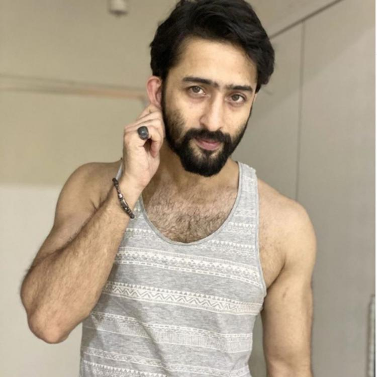 Shaheer Sheikh uses a reference from The Jungle Book as he flaunts his all new bearded look; See PHOTO
